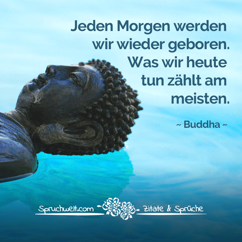 Jeden morgen werden wir wieder geboren was wir heute tun z hlt am meisten buddha zitat - Nasse fenster am morgen was tun ...
